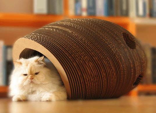 Abrigo para Gatos