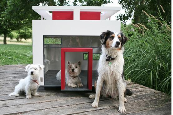 Mansão para Cachorros