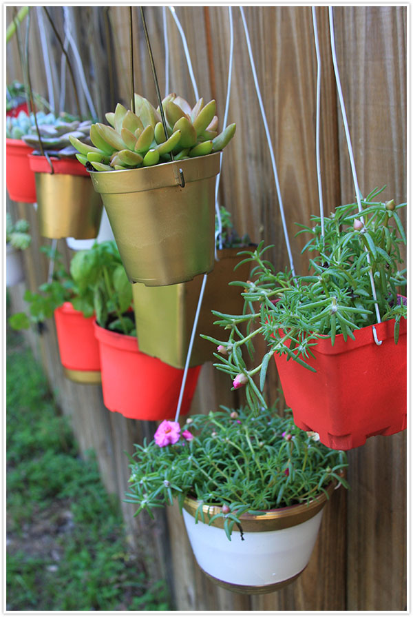 Vasos Reciclados no Jardim