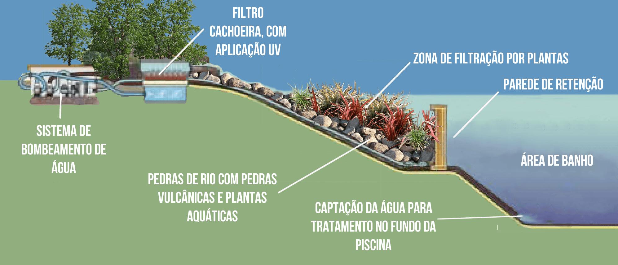 Piscinas naturais arquidicas for Filtro natural para piscina