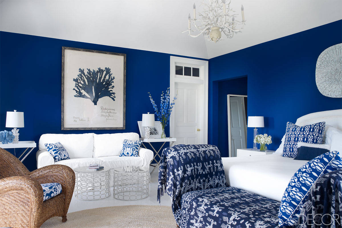 Azul Royal Decoração  Arquidicas