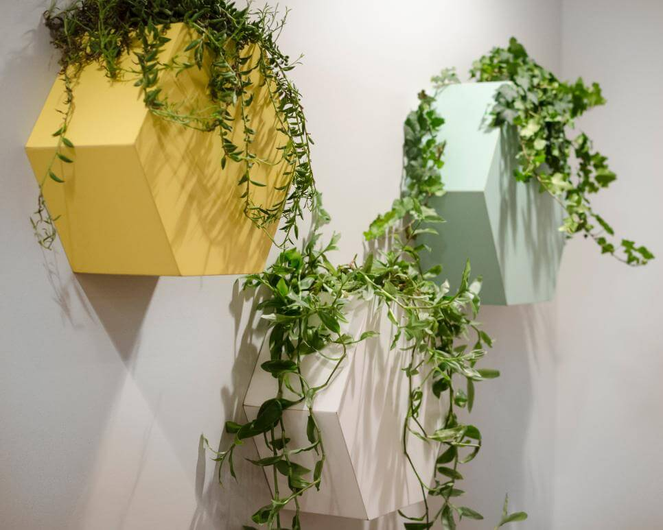 jardim vertical vasos