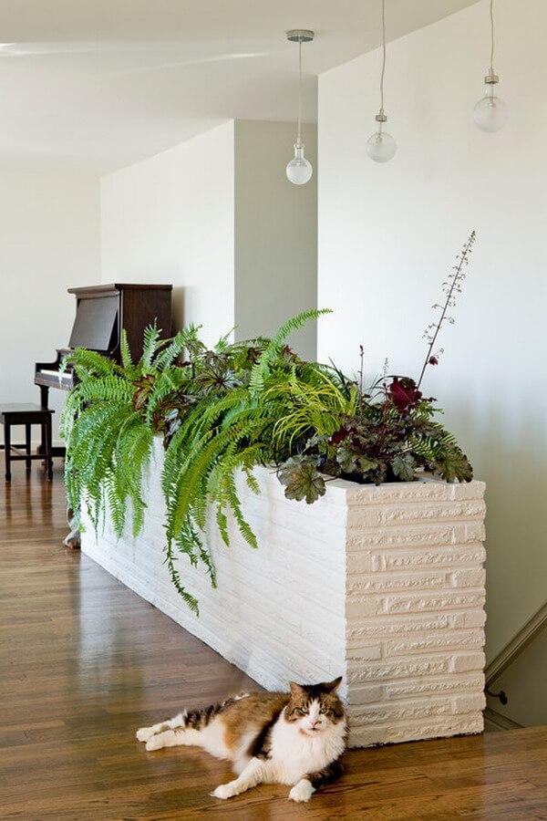 fotos de jardim interno : fotos de jardim interno:Jardim de Inverno – Plantas, Fotos e Dicas para Cultivo – Arquidicas
