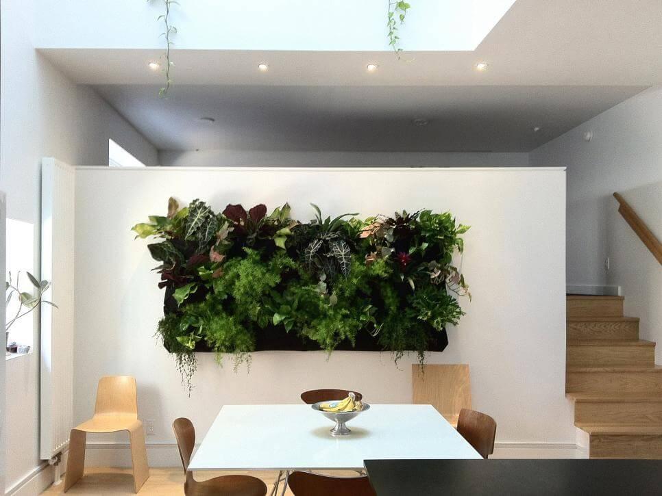 painel de plantas