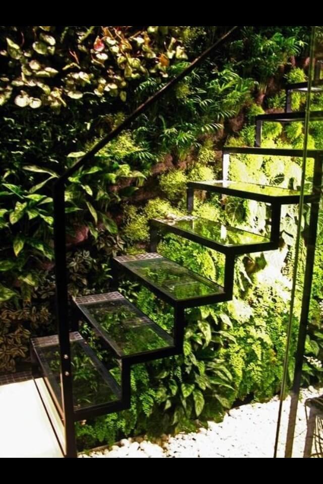 jardim de inverno escada