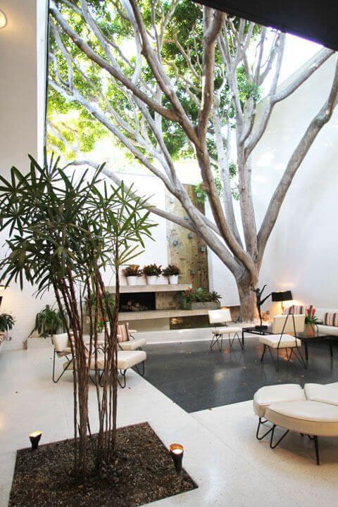 móveis para jardim de inverno