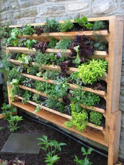 Jardim vertical aprenda como fazer dicas e fotos for Vertical pallet garden bed