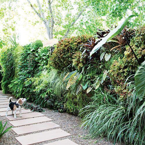 jardim vertical muro