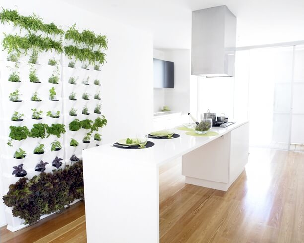 jardim vertical na cozinha