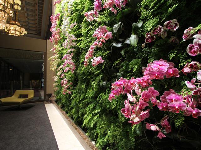jardim vertical orquídeas