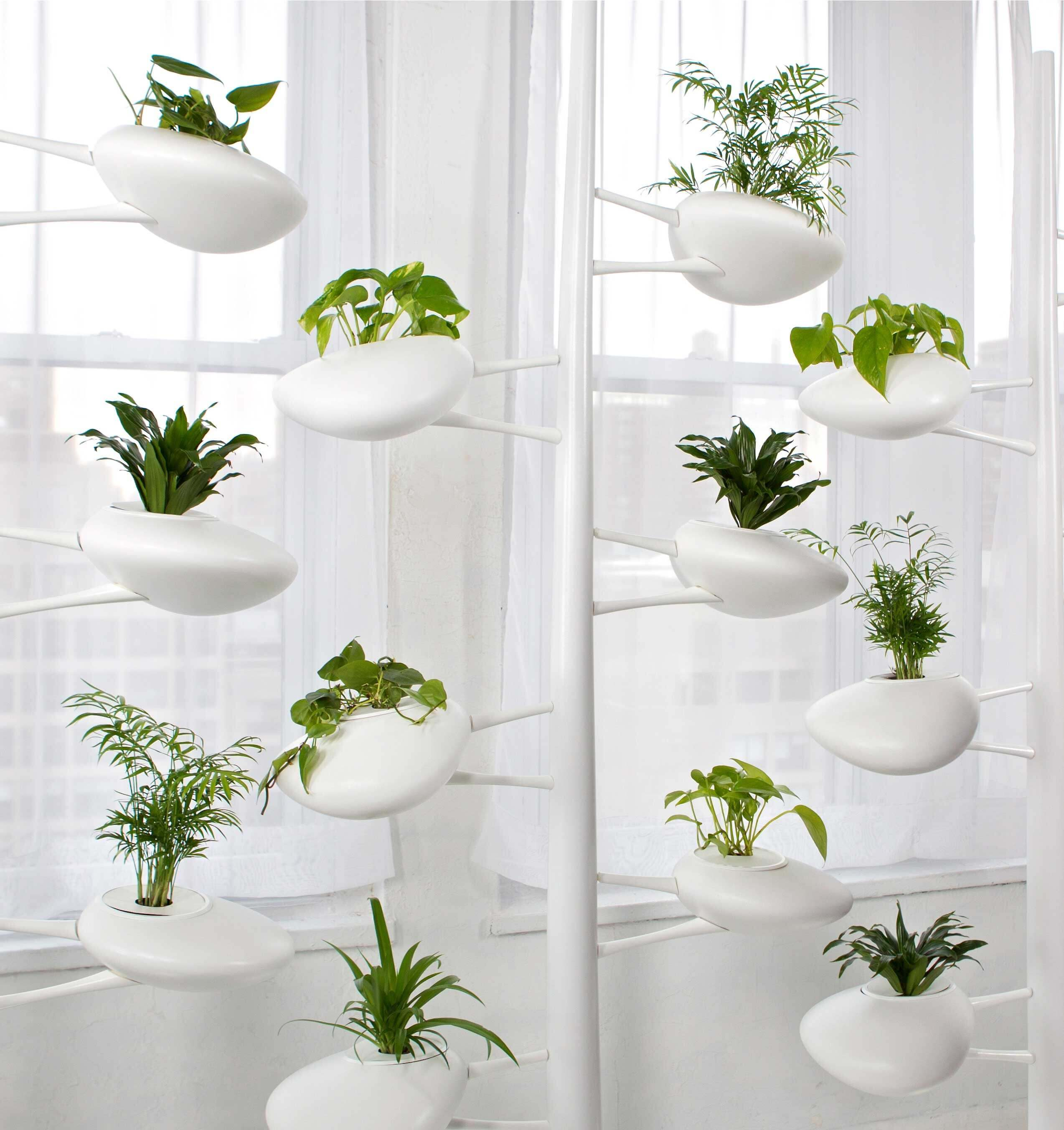 jardim vertical suporte
