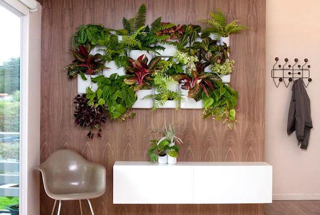 jardim vertical aprenda como fazer dicas e fotos. Black Bedroom Furniture Sets. Home Design Ideas