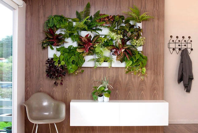 Jardim vertical aprenda como fazer dicas e fotos - Como hacer un jardin vertical de interior ...
