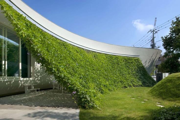 jardins verticais como fazer