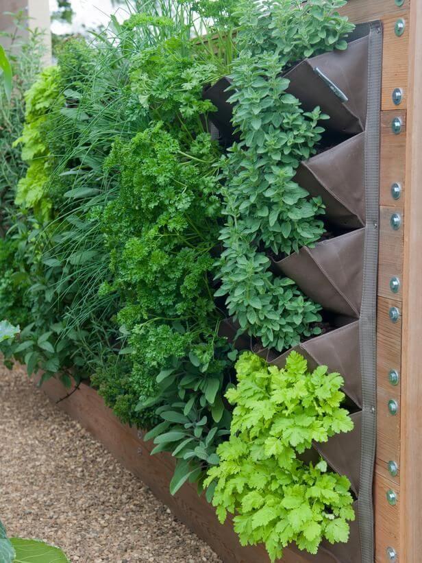 Jardim vertical aprenda como fazer dicas e fotos arquidicas - Herb gardens for small spaces gallery ...