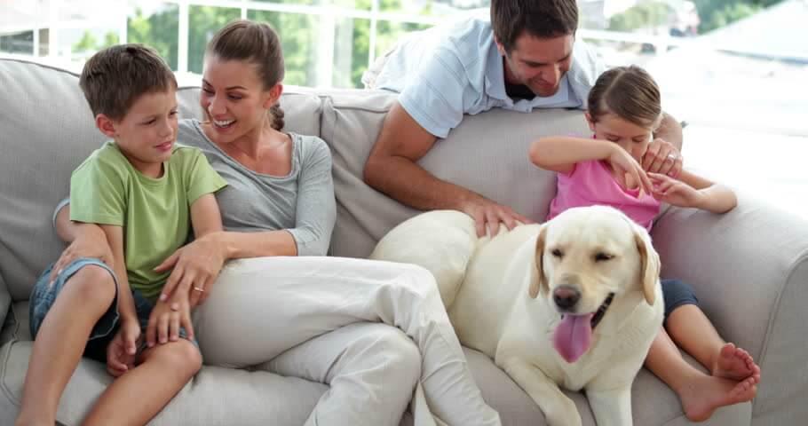 impermeabilização sofá